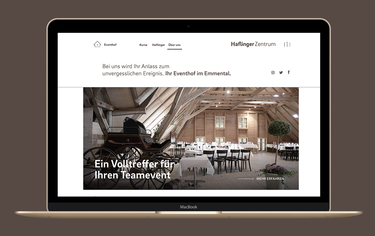Haflinger Zentrum Digital Website Ueber uns Laptop