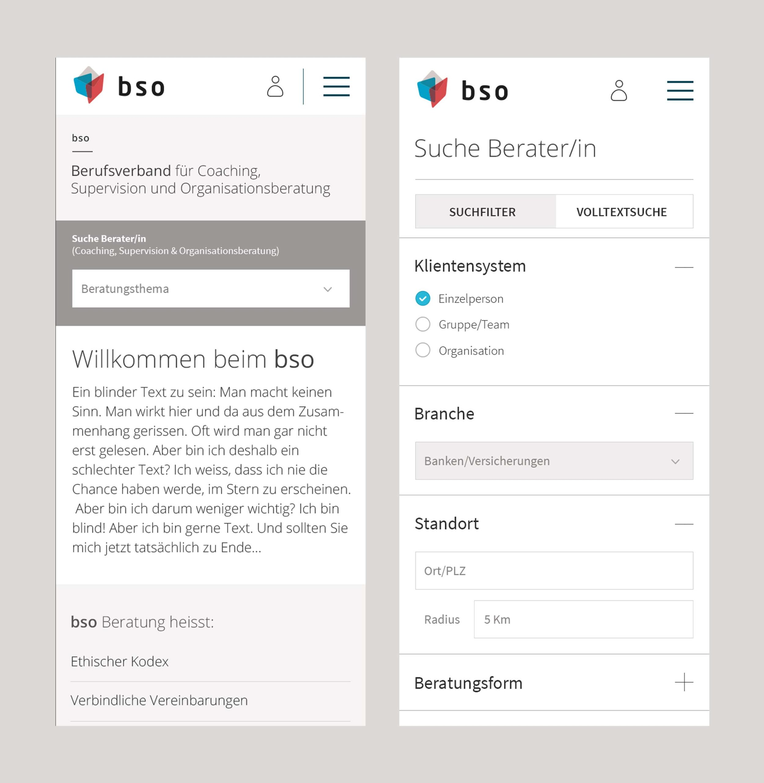 BSO Digital Website Home Mobile